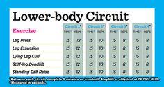 Lower_body_circuit