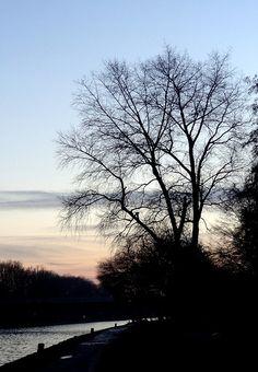 154|365 Sunset.