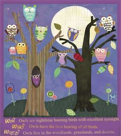 Owls Canvas Reproduction