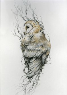 Chouette effraie x 14 reproduction du dessin original Barn owl 11 x 14 reproduction of original drawing by NestandBurrow Buho Tattoo, Et Tattoo, Tattoo Owl, White Owl Tattoo, Owl Tattoo Back, Hedwig Tattoo, Barn Owl Tattoos, Snow Tattoo, Gray Tattoo