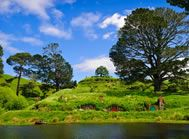 The most picturesque farmlands in all the world - Not biased at all! Have you visited Hobbiton yet?