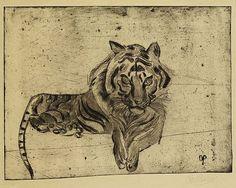 Otto Pankok - Tiger, liegend