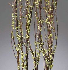 Berry Birch Branches - Green