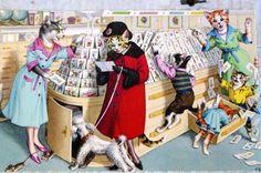 mainzer dressed cats