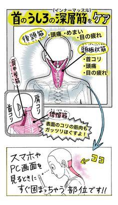 タオルが大活躍する夏の季節。超便利な「タオルストレッチ」で首コリ&肩コリを解消してみませんか?ストレスや緊張が続いていたり、よく頭をつかう人がなりやすい後頭部からうなじにかけての首コリ。放っておく...