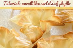 Working with phyllo dough can sometimes be tricky if handled the wrong way. Read through our secret tips that will make you succeed every time!