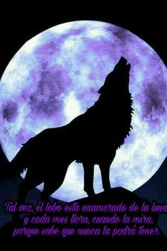 Un lobo y su luna