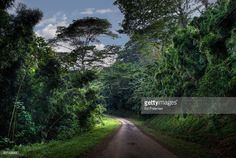 A dirt road on the eastern side of Kauai