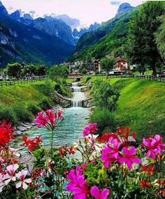 🏔 🏞 Beauty in Life
