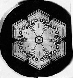 19世紀後半、ベントレーは自ら工夫したカメラで雪の結晶を5000枚以上撮影した。今も昔も同じ形が存在しない、美しい結晶の姿を紹介する。