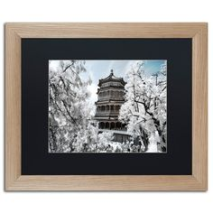 "Trademark Art ""White Temple I"" by Philippe Hugonnard Framed Photographic Print Size: 16"" H x 20"" W x 0.5"" D, Matte Color: Black"