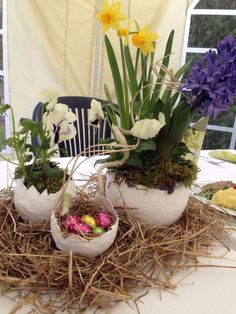 Easter Projects, Easter Crafts, Happy Easter, Jar, Plants, Ideas, Happy Easter Day, Planters, Plant
