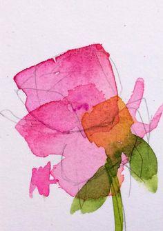 Pink Rose no. 21 original floral watercolor painting Angela Moulton ACEO Art #Impressionism