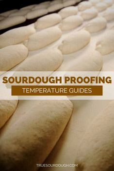 Sourdough Proofing Temperature Guides This is a really thorough article going through how temperature affects sourdough and what temperature is best for proofing sourdough depending on what king of flavor you want and what your schedule is. Sourdough Recipes, Sourdough Bread, Bread Recipes, Baking Recipes, Yeast Bread, Croissants, Scones, Bread Starter, No Knead Bread