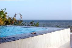 A Photo Tour of Rincon, Puerto Rico | Horned Dorset Pool Palmas Del Mar Photography