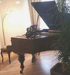 Grand Piano, Du0027occasion, Mains
