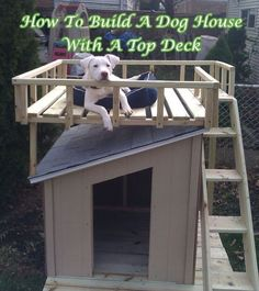 How To Build A Dog House  With A Top Deck by katiekat