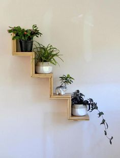 Do you need inspiration to make some DIY House Plants Decor in your Home? Some plants appear to entice more pests than others. Just about all of my plants are succulents of some sort. It's possible to use pots with… Continue Reading → Diy Wand, House Plants Decor, Plant Decor, Bedroom With Plants, Plant Shelves, Display Shelves, Step Shelves, Wall Shelves Design, Small Shelves
