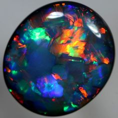 SOLID BLACK OPAL  Flagstone Harlequin pattern, bright gemmy fire from Australia