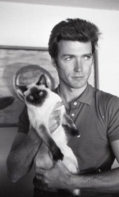 Larry Barbier Clint Eastwood with Cat Fine Art Print - Siamese Cat - Ideas of Siamese Cat - Clint Eastwood with his cat The post Larry Barbier Clint Eastwood with Cat Fine Art Print appeared first on Cat Gig. Siamese Cats, Cats And Kittens, Cats Bus, Ragdoll Kittens, Tabby Cats, Funny Kittens, Bengal Cats, White Kittens, Adorable Kittens