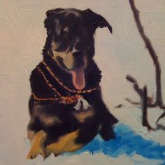 "The ""Morgan"" in oil Aja Lee Original- portrait of her beloved dog snow shoeing in big bear mnt. Snow Dogs, Big Bear, California, Oil, Fine Art, Portrait, Animals, Animales, Animaux"