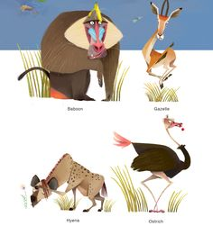 Animal illustration for Baibuk Group's books