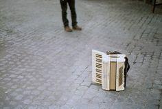 learn the accordian