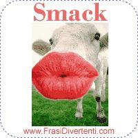 Bacio mucca
