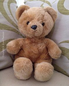 Found at Bonsall, Derbyshire, UK on 20 Feb. 2016 by Josie: This is Teddy. We don't know his real name. He was found yesterday February, head first Derbyshire, Lost & Found, Pet Toys, Mud, February, Teddy Bear, Animals, Animaux, Animal