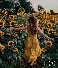 Sunflower Feild, Sunflower Field Pictures, Pictures With Sunflowers, Sunflower Field Photography, Love Photography, Portrait Photography, Teen Photography Poses, Aerial Photography, Dibujos Tumblr A Color