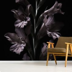 Transform your home with this gorgeous Shadowed Lilies wallpaper mural. It's custom-made to fit your wall and delivered with instructions. FREE UK delivery within 2 to 4 working days. Lily Wallpaper, Flower Wallpaper, Plum Decor, Buy Wallpaper Online, Vintage Floral Wallpapers, Library Images, Wall Murals, Wall Art, Grey Paint
