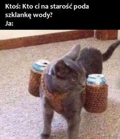 Very Funny Memes, Wtf Funny, Funny Cats, Funny Animals, Cute Animals, Hilarious, Funny Lyrics, Polish Memes, Weekend Humor