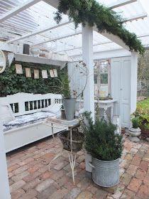 princessgreeneye: Winterliches aus dem Pflanzzimmer............