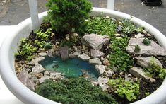 Love the little pond here   ********************************************** Minis by Mary