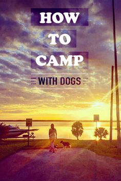 Camping with dogs can be hard, but it can also be amazing! check out our post about how to Camp with dogs to have more fun with your furry friends.
