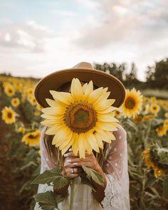Sunflower girl shared by Hippy on We Heart It Happy Flowers, Beautiful Flowers, Summer Flowers, Creative Photography, Photography Poses, Sunflower Field Photography, Sunflower Field Pictures, Photographie Portrait Inspiration, Sunflower Wallpaper