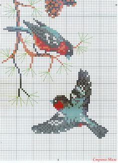 winter birds cross stitch (bottom half)