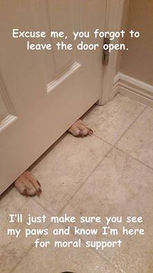 you forgot to leave the bathroom door open