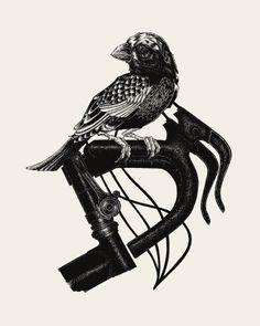 Image of Bird on Bike // 16x20 Artprint