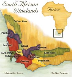 Types of South African Wines  South Africa is a place which one may be surprised to learn produces a large quantity of wines. There are a multitude of wine regions throughout the area where red and white wines are produced, bottled and shipped out for the entire world to enjoy. With regard to red wines in particular, South African wineries provide a wide array for wine enthusiasts to appreciate. Some of these delicious red wine varieties will be described below.   South African Red Wines…
