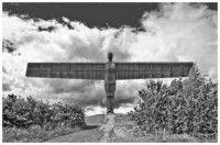 The Angel Of The North Angel Of The North, Camera World, Antony Gormley, Digital Camera, Digital Camo, Digital Cameras