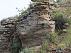 Here's the Pryor up close, showing prominent cross-bedding: