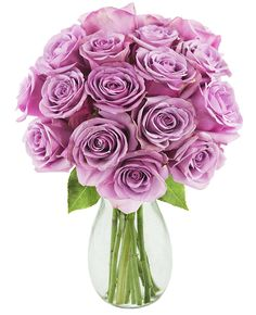 Kabloom Violette Lavender Roses (Dozen and a Half) - With Vase -- Hurry! Check out this great item : Fresh Groceries