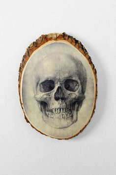 "Urban Outfitters Skull Plaque, 8x10"" - $18 on sale"