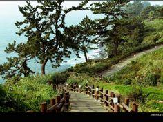 Isla de Jeju: una de las nuevas 7 maravillas del mundo!