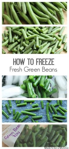 How to Freeze Fresh Green Beans: Your guide to freezing the fresh summer taste to enjoy all year! Freezing Vegetables, Frozen Vegetables, Fruits And Veggies, Freezing Tomatoes, Freeze Fresh Green Beans, Frozen Green Beans, Freezing Green Beans, Freezing Fruit, Healthy Foods