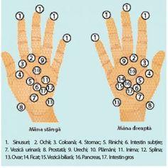 Cum faci sa dispara durerea de ulcer prin simpla masare a mainilor[…] Peace, Cancer, Sobriety, World