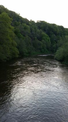 May 2015-River wye from the suspension bridge