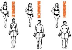 Body types or Somatotypes Weight Gain, Weight Loss, Body Types, Childhood, Workout, Comics, Extended Family, Healthy, Angels