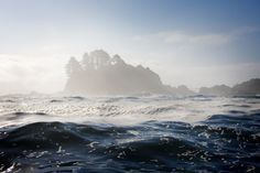 """Travelling to the remote islands of British Columbia's Haida Gwaii — often called the """"Canadian Galapagos"""" — is the perfect holiday for nature and wildlife lovers."""